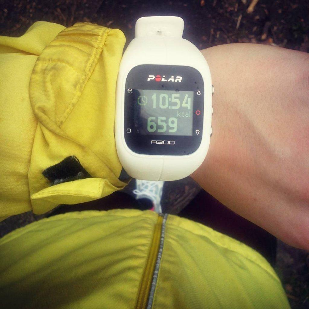zegarek polar a300